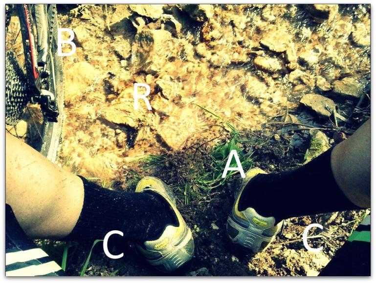 Cattura_piedi2aa